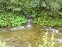 Vysoký potok posiluje Moravu zprava těsně pod jejím soutokem s malou Moravou.