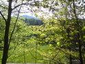 První větší levobřežní niva Moravy a za ní vrch, zvaný Slamník.