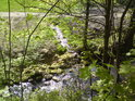 Levostranný přítok posiluje řeku Moravu při vstupu do obce Dolní Morava.