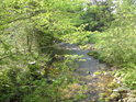 Průzračná voda řeky Moravy.