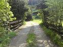 Malý most přes řeku Moravu v obci Dolní Morava.