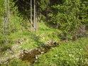 Zde se na pravém břehu řeky Moravy zvedá vysoký svah.