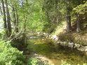 V obci Dolní Morava narazíme na možná první kousíček téměř písečného břehu řeky Moravy.