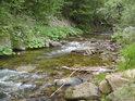 Nazelenalý je spíše dojem, než vlastní voda řeky Moravy.