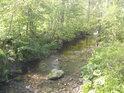 Břehy Moravy jsou prosluněné a řeka, která již ztratila sílu horské bystřiny tu začíná pomalu nabývat na síle.