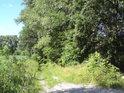 Levobřežní cesta podle řeky Moravy pod horním silničním mostem v Bohdíkově.