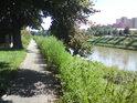 Levobřežní chodník podél Moravy v Kroměříži mezi prohnutou lávkou a dolním železničním mostem.