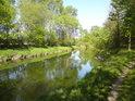 Pěšina po pravém břehu řeky Moravy nad městem Litovel přichází z národní přírodní rezervace Vrapač.