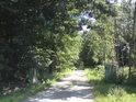 Na levém břehu řeky Moravy pod městem Litovel začíná přírodní rezervace Litovelské luhy.