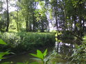 Toto poloslepé rameno u obce Doubravice je na jedné straně spojeno s řekou Moravou a na druhé do něj ústí svodnice z Doubravického rybníka.