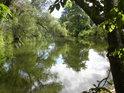 Poklidná hladina řeky Moravy nedaleko obce Řimice.