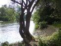 Rybářské zátiší na řece Moravě pod jezem nedaleko obce Řimice.