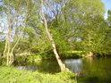 Přírodní památka Malá voda se nachází na západ od města Litovel a své jméno převzala od stejnojmenného pravobřežního náhonu řeky Moravy.
