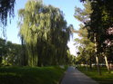 Sídliště v Napajedlích je chráněno sypanou hrází před velkými vodami řeky Moravy.