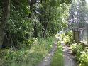 Cesta podél pravého břehu Moravy v Postřelmově.