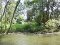 Pohled přes řeku na levobřežní luh řeky Moravy pod Postřelmovem.