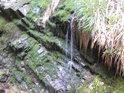 Mechový vodopád jednoho z pravobřežních přítoků Moravy.