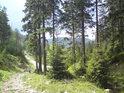 Údolí Moravy protíná klikatící se horská cesta.