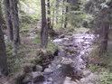 První větší soutok, Morava přibírá zleva horský potok.