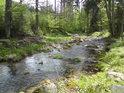 Klidnější partie horního toku Moravy.