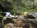 Hluboký potok posiluje řeku Moravu zprava.