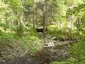 Vysychající přítok Moravy.